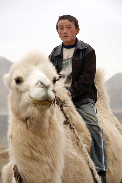 boy on camel Gobi Desert
