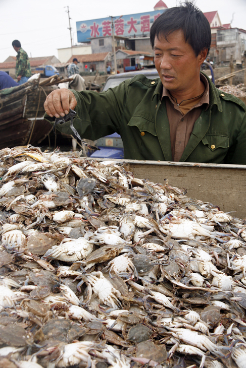 man & crabs, China